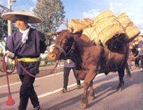 牛方の道中を再現するパレード牛は南部牛を由来とする短角牛.jpg